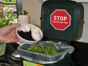 Ecosafe Green | Zero waste - compost bin