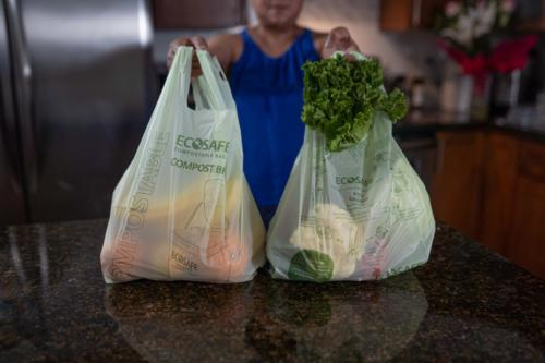 Compostable Checkout Bags